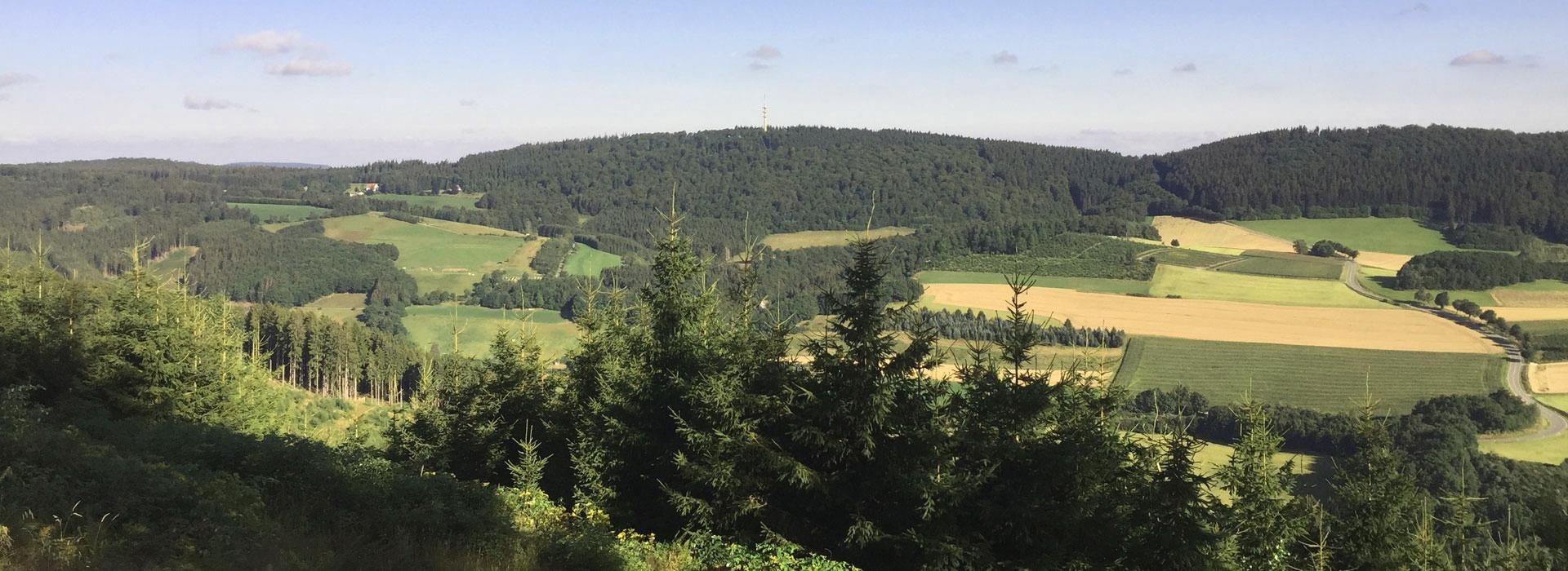 Betreuung-von-Waldbesitzern-komplett
