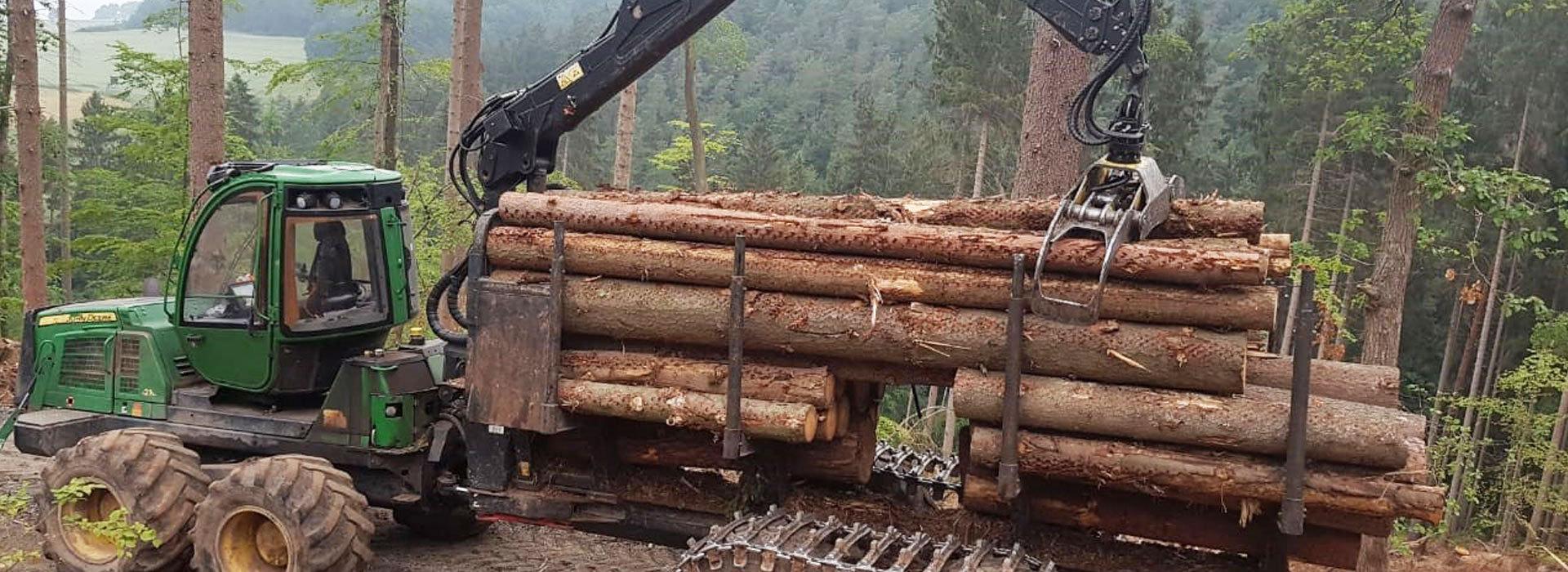 Hochmechanisierte-Holzernte